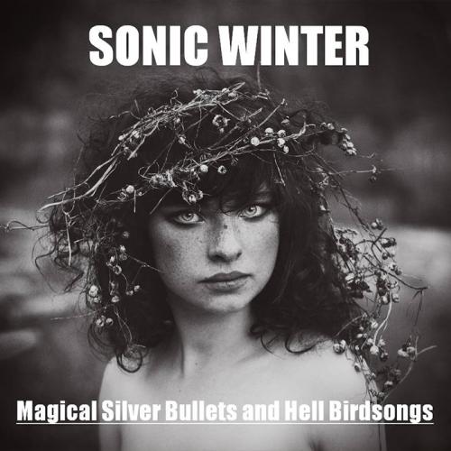 Sonic Winter2